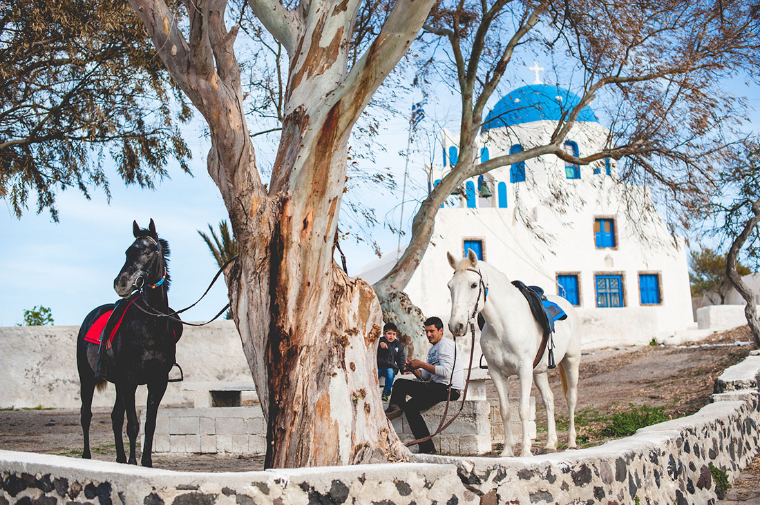Horses near beautiful church in Santorini